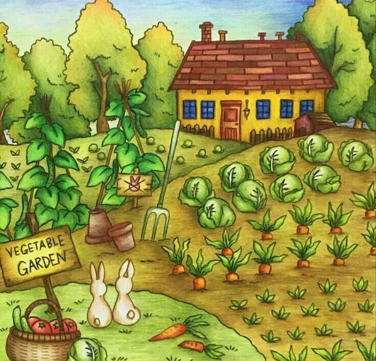 сюжетная картинка огород овощи