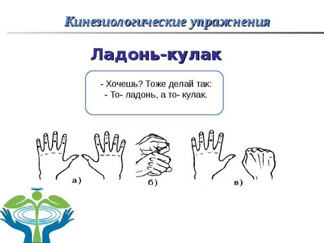 кинезиологическое упражнение ладонь кулак